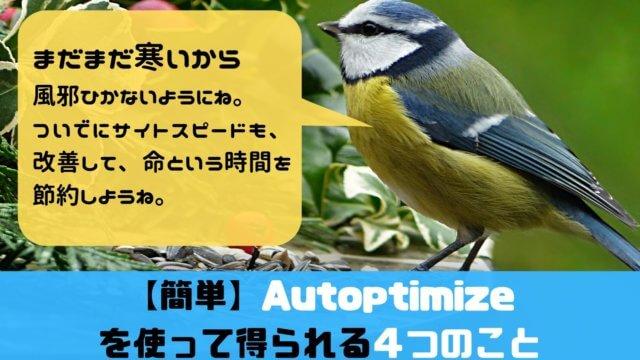 Autoptimizeの記事アイキャッチ